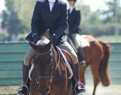 13 Equitation Extra Credit